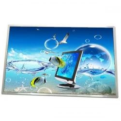 Display Samsung 10.1